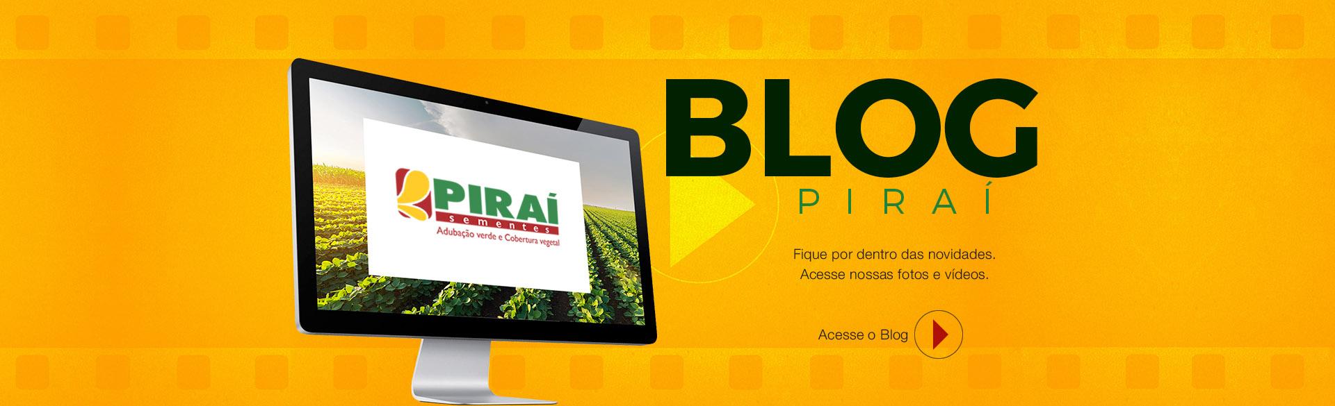 Blog - Fique por dentro das novidades.